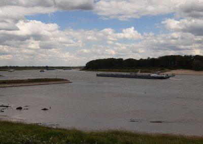 Dijkversterking Waal – Waterschap Rivierenland – Gemeente West Betuwe